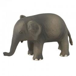 PETIT ELEPHANT AUJOURD'HUI C'EST MERCREDI